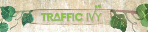 2019 01 23 1534 300x65 - The New Traffic Ivy Tool - A Review and Demo of Front End, Upsells, and Bonuses