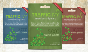 2019 01 23 1536 300x177 - The New Traffic Ivy Tool - A Review and Demo of Front End, Upsells, and Bonuses