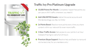 2019 01 24 0028 300x167 - The New Traffic Ivy Tool - A Review and Demo of Front End, Upsells, and Bonuses
