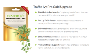 2019 01 24 0028 001 300x176 - The New Traffic Ivy Tool - A Review and Demo of Front End, Upsells, and Bonuses