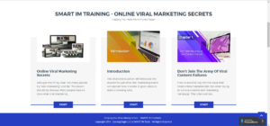 2019 04 02 1144 300x140 - How To Use Online Viral Marketing In 2019